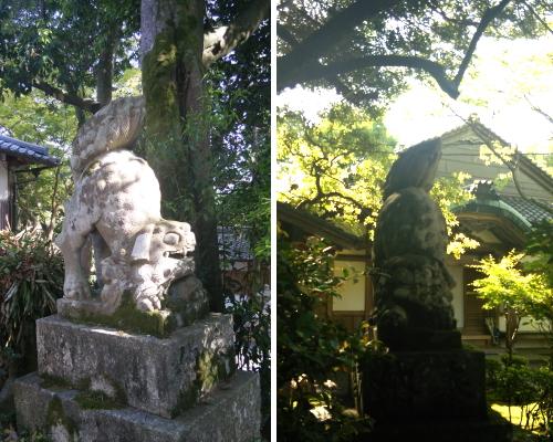2014.5.10赤山禅院image9