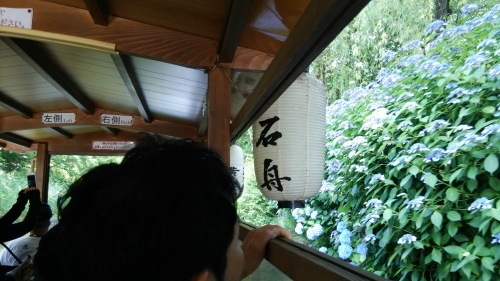 2014.6.15伏見image12