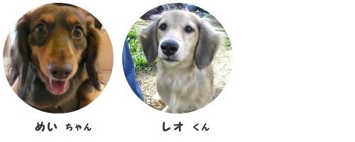 2014.8.5_image2