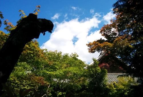 2014.9.7高桐院image10